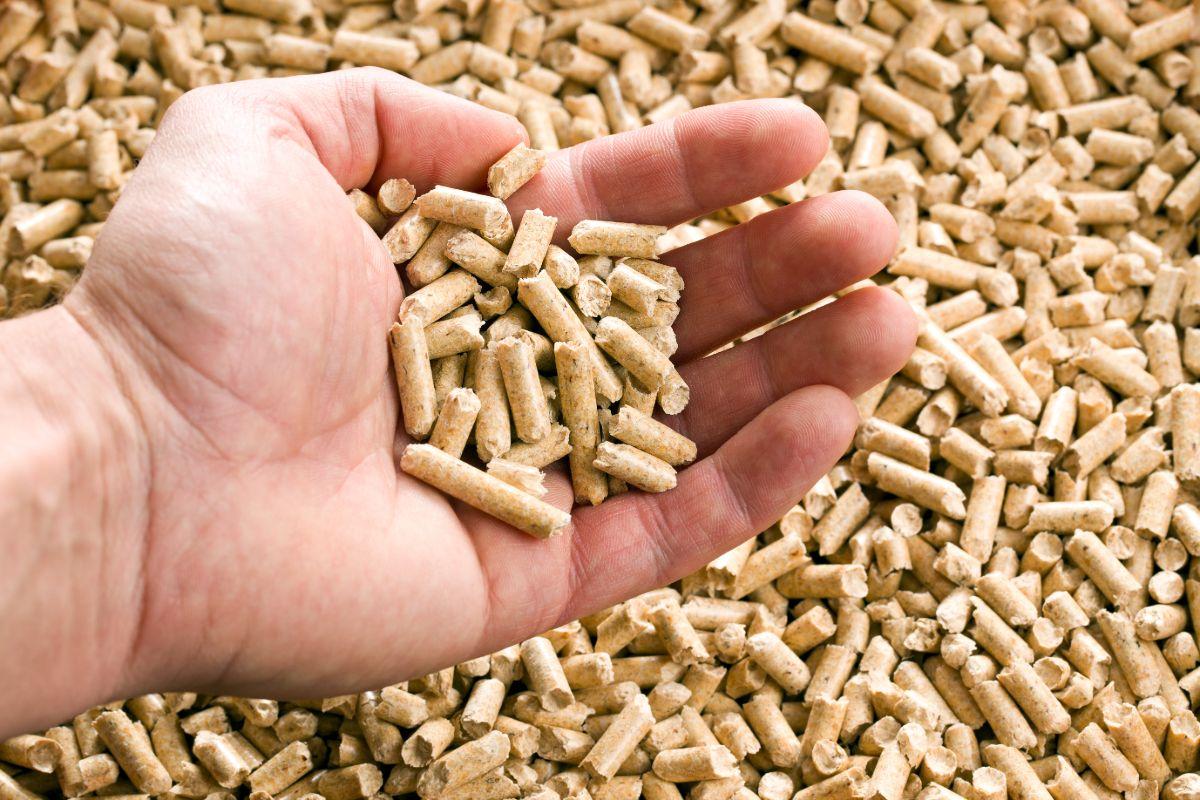 Acquistare pellet in offerta e risparmiare
