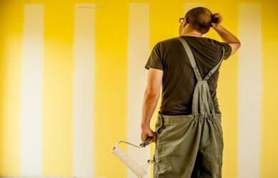 rulli pittura professionale